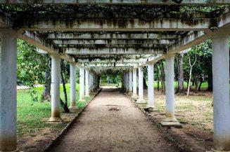 Botanical Garden of Rio